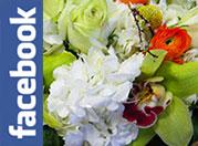 Irvine Flower Delivery | Visser's Florist, Irvine