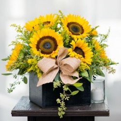 Box Full of Sunshine from Visser's Florist and Greenhouses in Anaheim, CA