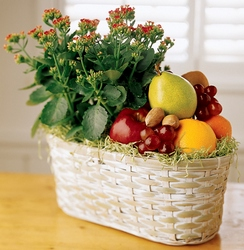 Fruits & Flowers from Visser's Florist and Greenhouses in Anaheim, CA