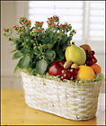 Newport  Beach Florist - Fruits and Flowers