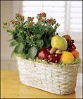 Anaheim Florist - Fruits and Flowers