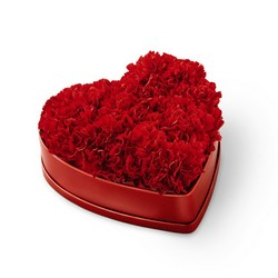 The FTD Heartfelt Carnation Box from Visser's Florist and Greenhouses in Anaheim, CA