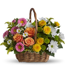 Sweet Tranquility Basket from Visser's Florist and Greenhouses in Anaheim, CA