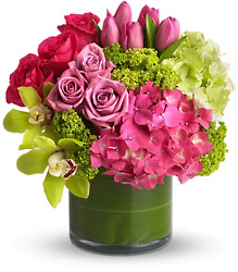 New Sensations from Visser's Florist and Greenhouses in Anaheim, CA